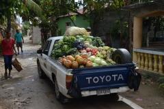 Fruitcar